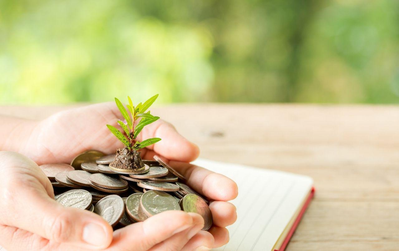 Educação financeira: entenda a importância para o cenário atual