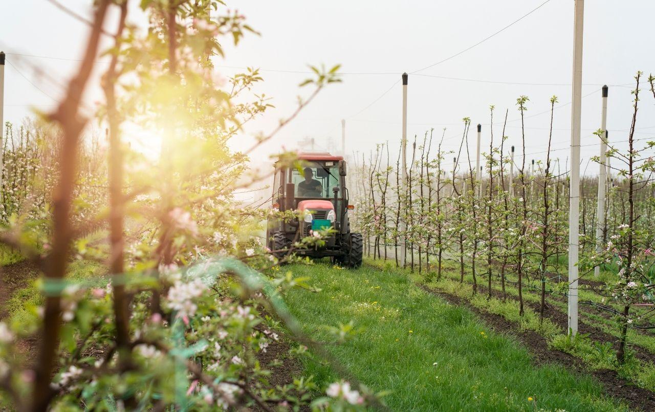 Consórcio de máquinas agrícolas: entenda como funciona
