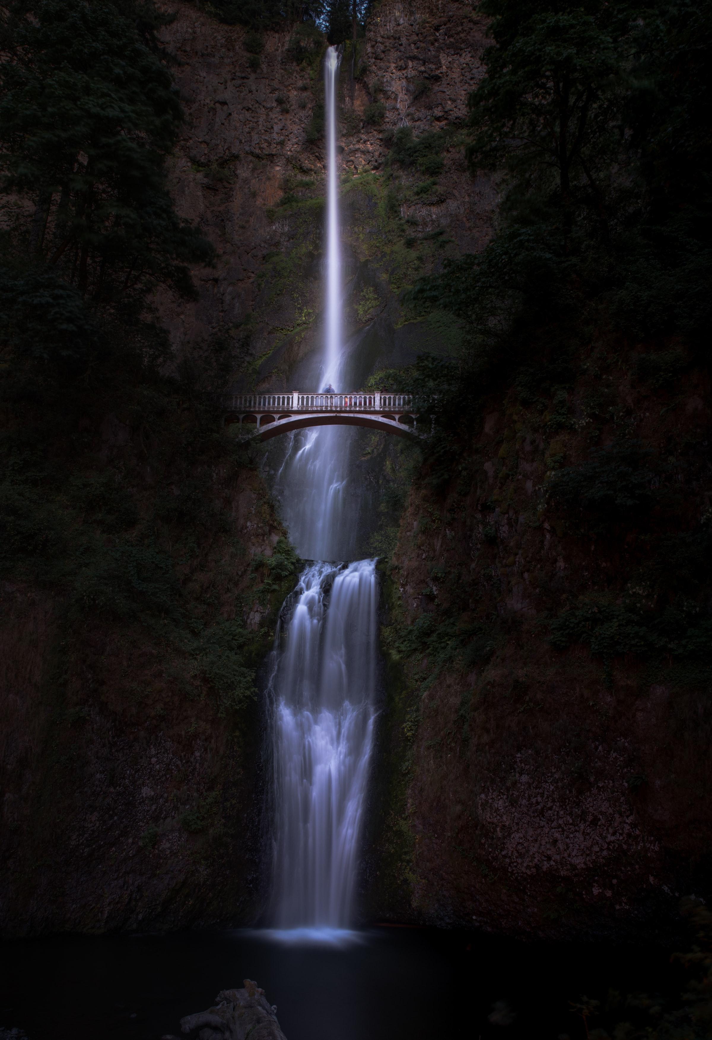 Multnomah Falls Lodge Website