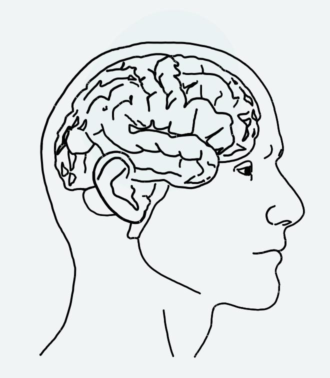 Grafischer Kopf eines Mannes, der das Gehirn zeigt.