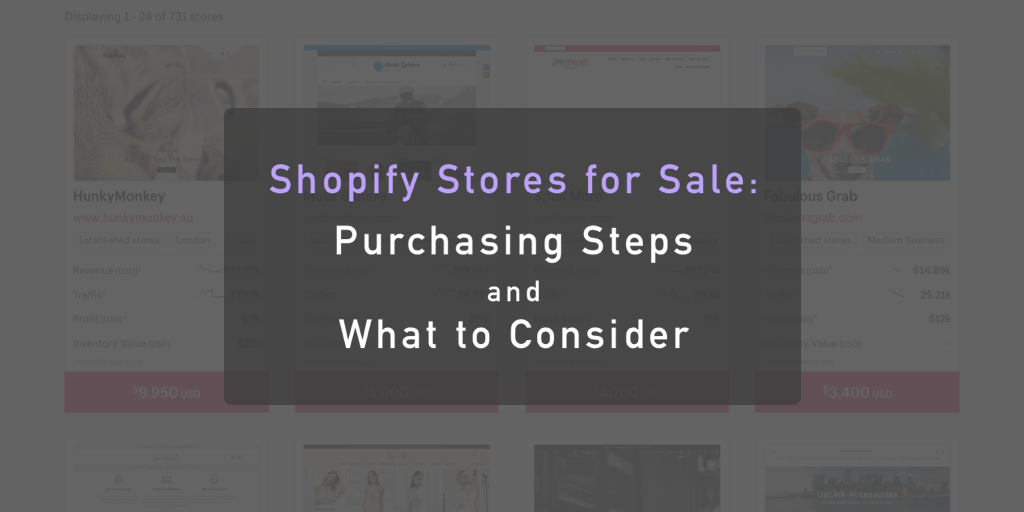 Visual of the title, Shopify Stores for Sale: Purchasing Steps and What to Consider