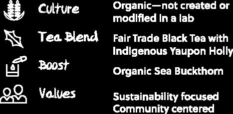 Buchi Kombucha key elements