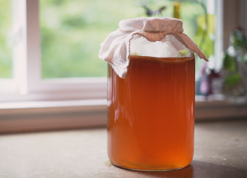 Make Kombucha at home—endlessly!
