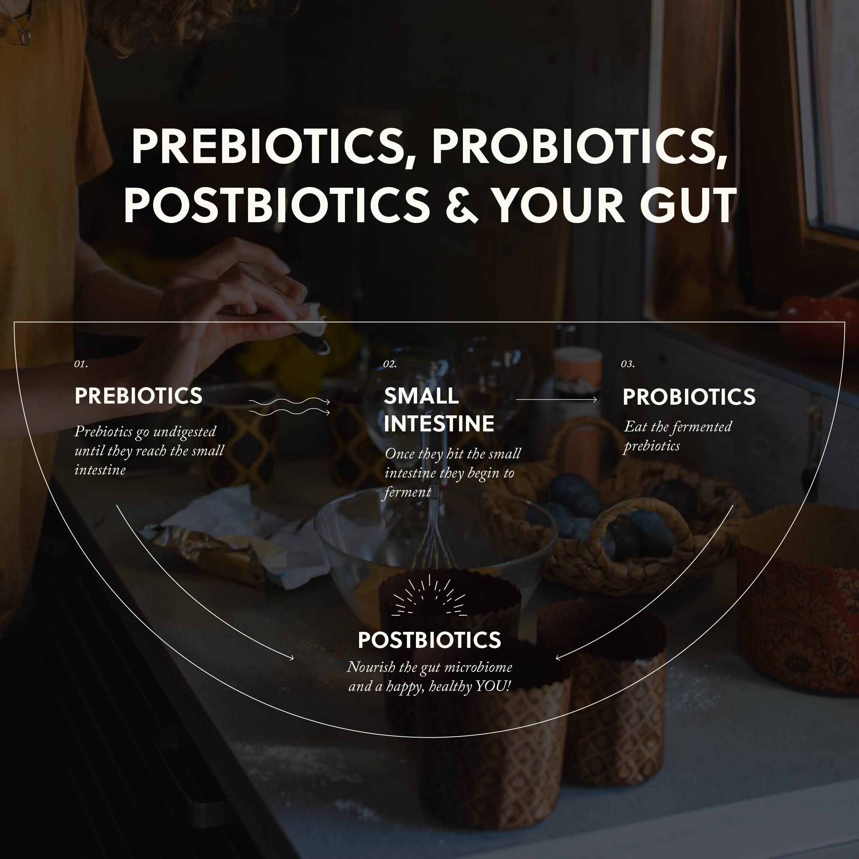 Prebiotics, Probiotics, & Postbiotics