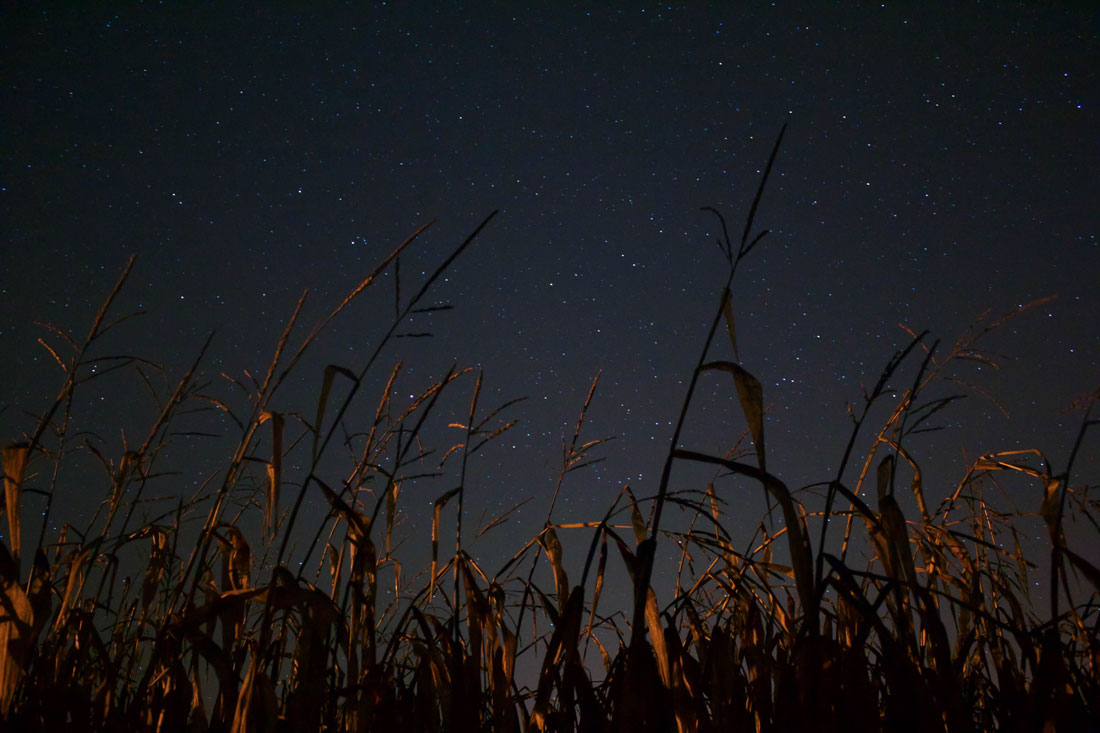 September's Corn Moon Reflection