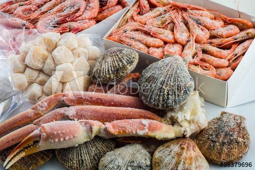 Frozen seafood supplier