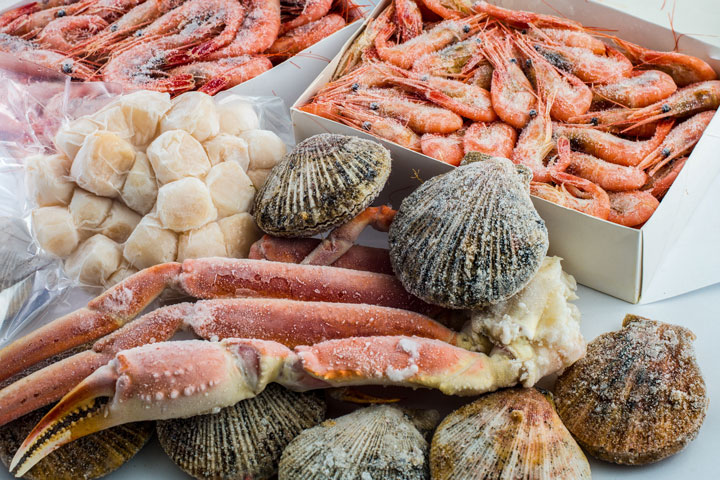 Frozen seafood supplier