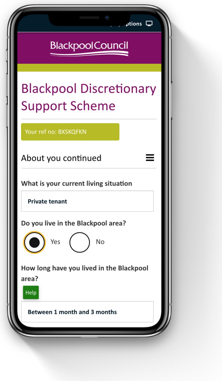 Discretionary support scheme form