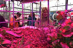 Op excursie naar verschilmakers: Aquaponics & afval eten (Dutch)