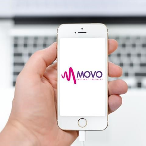 movo hand drawn
