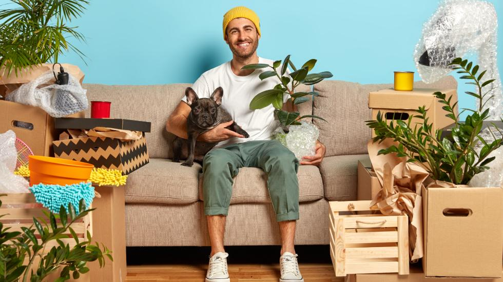 pets and renting property