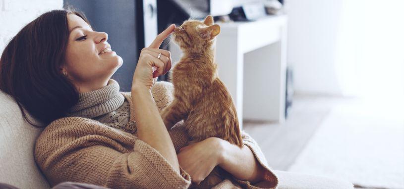 pet in rental property