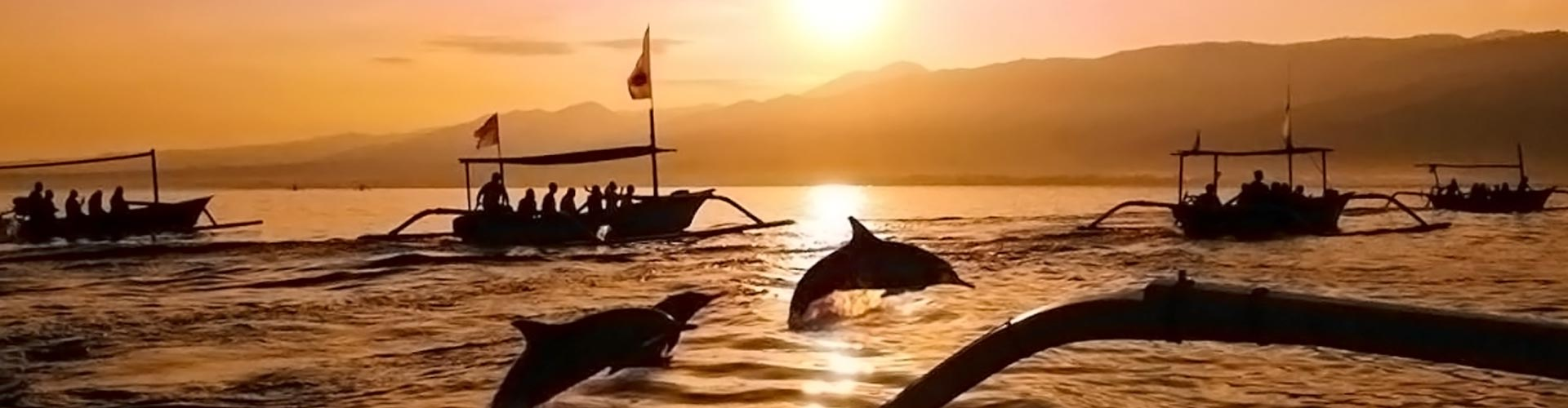 Bali Discovery Dolphin Watching Tour