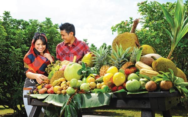Penang Orchard & Durian Tasting Tour*