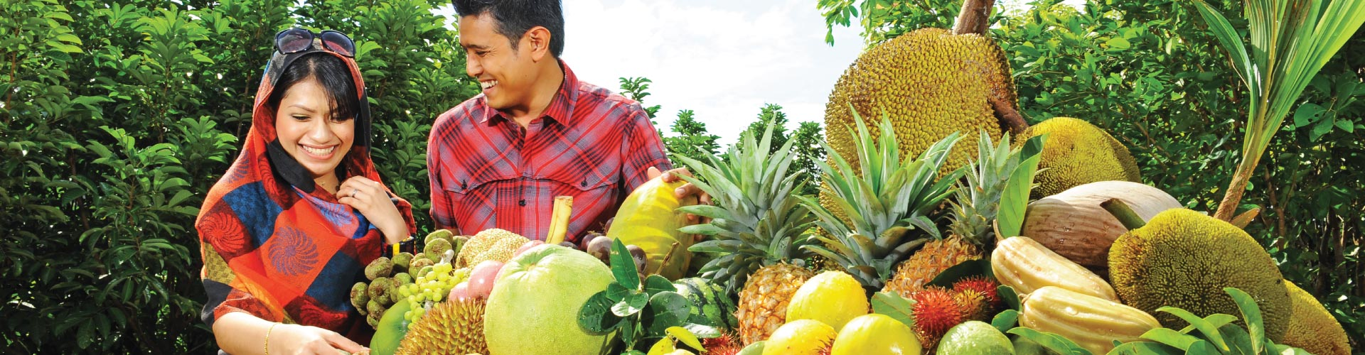 Penang Orchard & Durian Tasting Tour