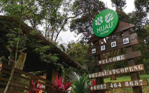 Rainforest Staycation At Hijau @ Gopeng