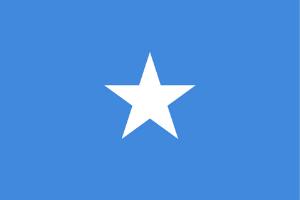 Somalia sitt flagg