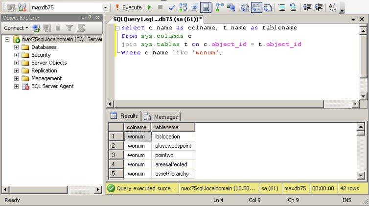 Sql-Script-IBM-Maximo-CMMS-results.jpg