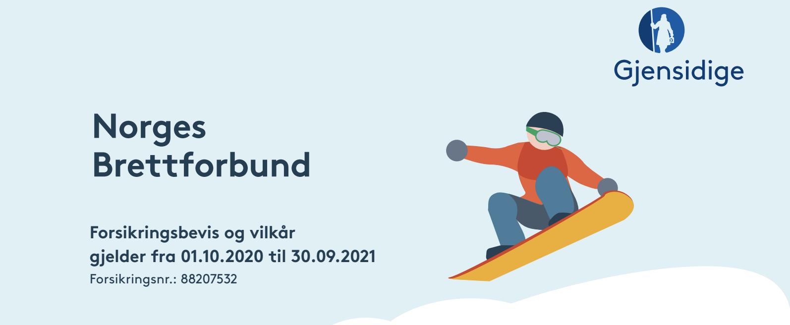 Forsikring Snowboard