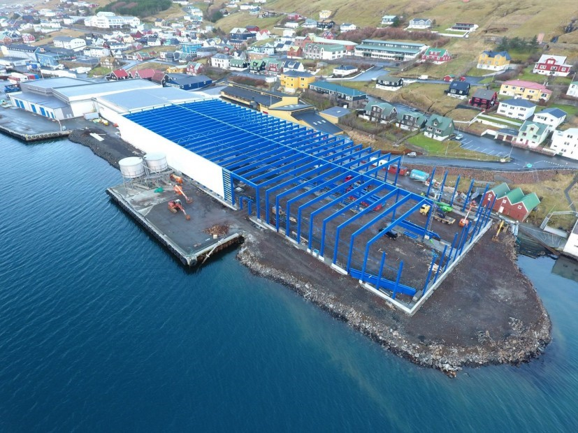 Construction of the new automatic pelagic plant.