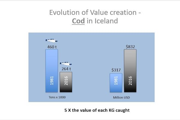 Value creation: a smaller catch generates higher revenue