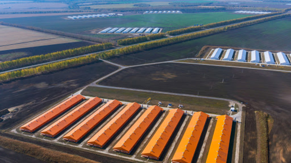 Russian agricultural holding company Damate Group, have invested in a turnkey solution for MDM freezing from Skaginn 3X. The new investment of EUR 2.2 million comes as a result of the company's plans to increase capacity by implementing highly automated solutions to their new processing facility.