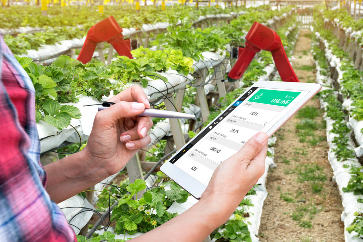 A person holding a tablet near agricultural sensors