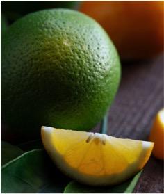 covid19 e vitamina C