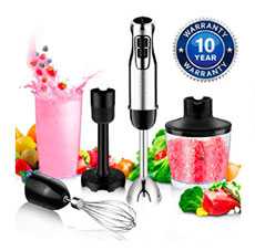 BSTY Hand Blender Deal picture