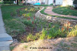 Bioretention Rain Garden