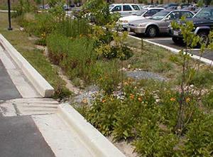 Bioretention Parking Lot