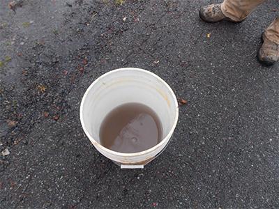 bucket of black water purple sediment