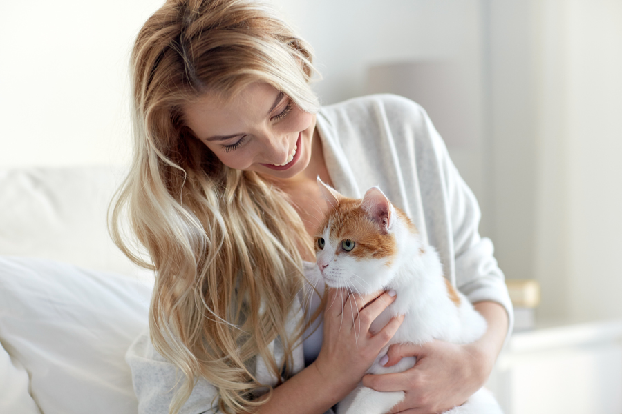 happy spayed cat with owner