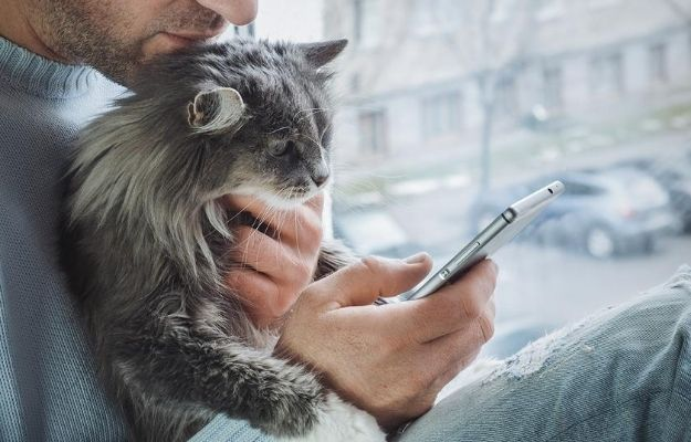 A man holding his cat face to the phone to have a veterinary telemedicine | Will Veterinary Telemedicine Become The New Way To See Your Vet?