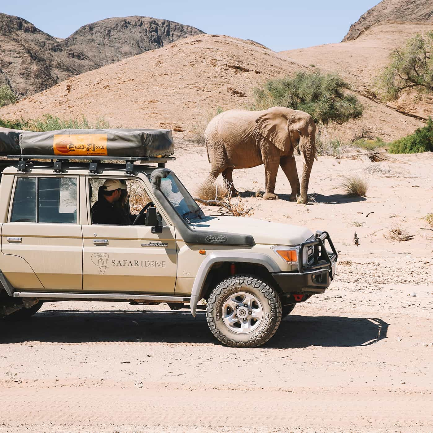 Safari Drive Land Cruiser driving passing a dusty elephant in the background