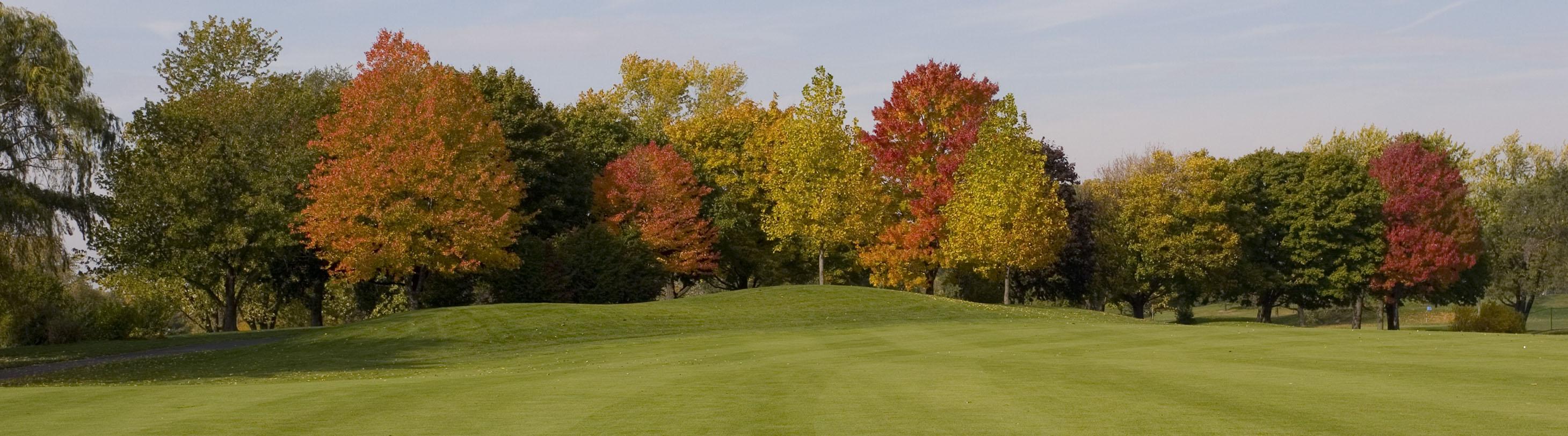 Bring home the turkey at Schaumburg Golf Club's annual golf scramble