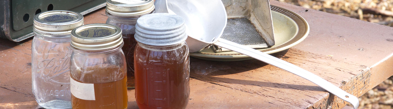 Learn all things maple syrup at Sugar Bush Fair