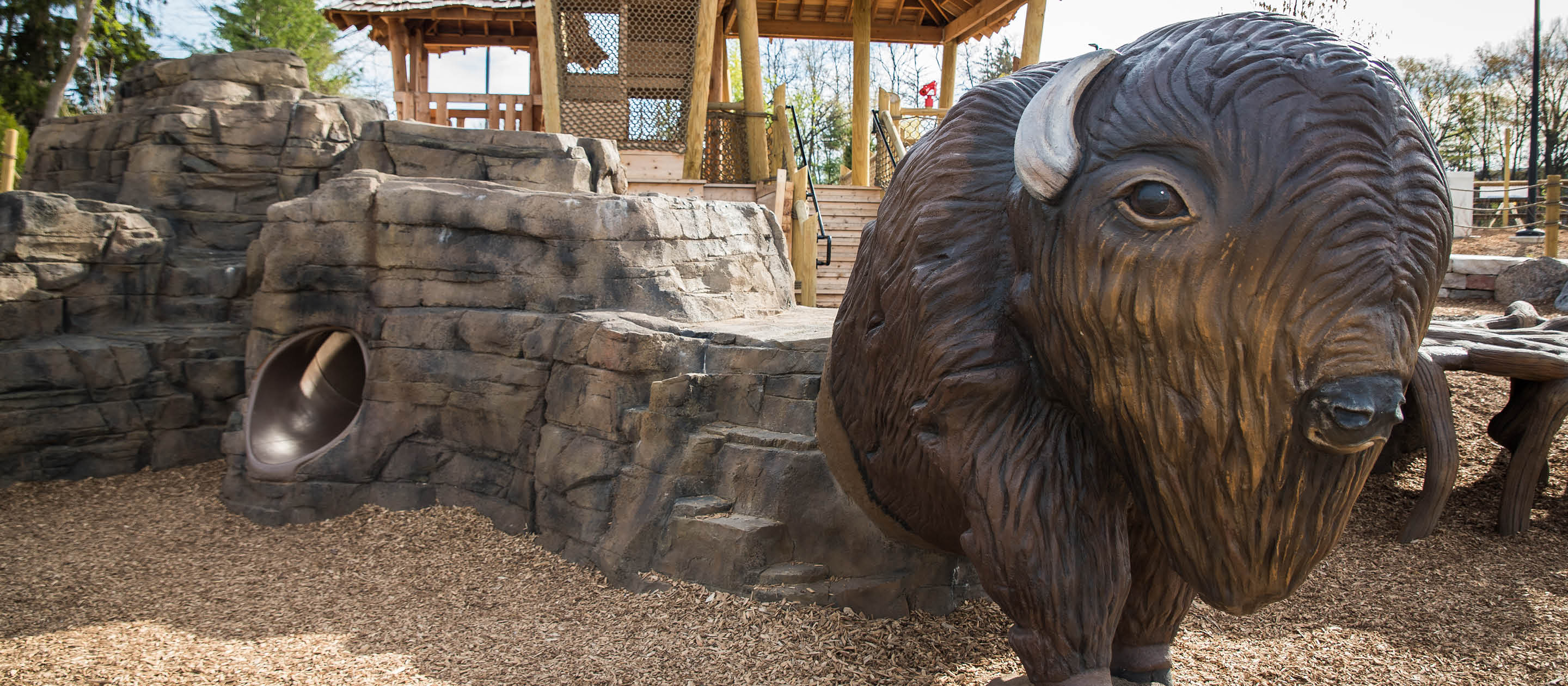 Bison's Bluff Opens July 10