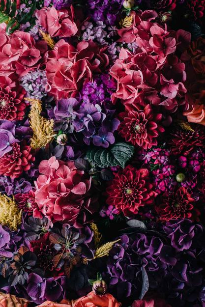 A large bouquet of red, pink, and purple flowers - Highly optimised image at viewed size (625px)