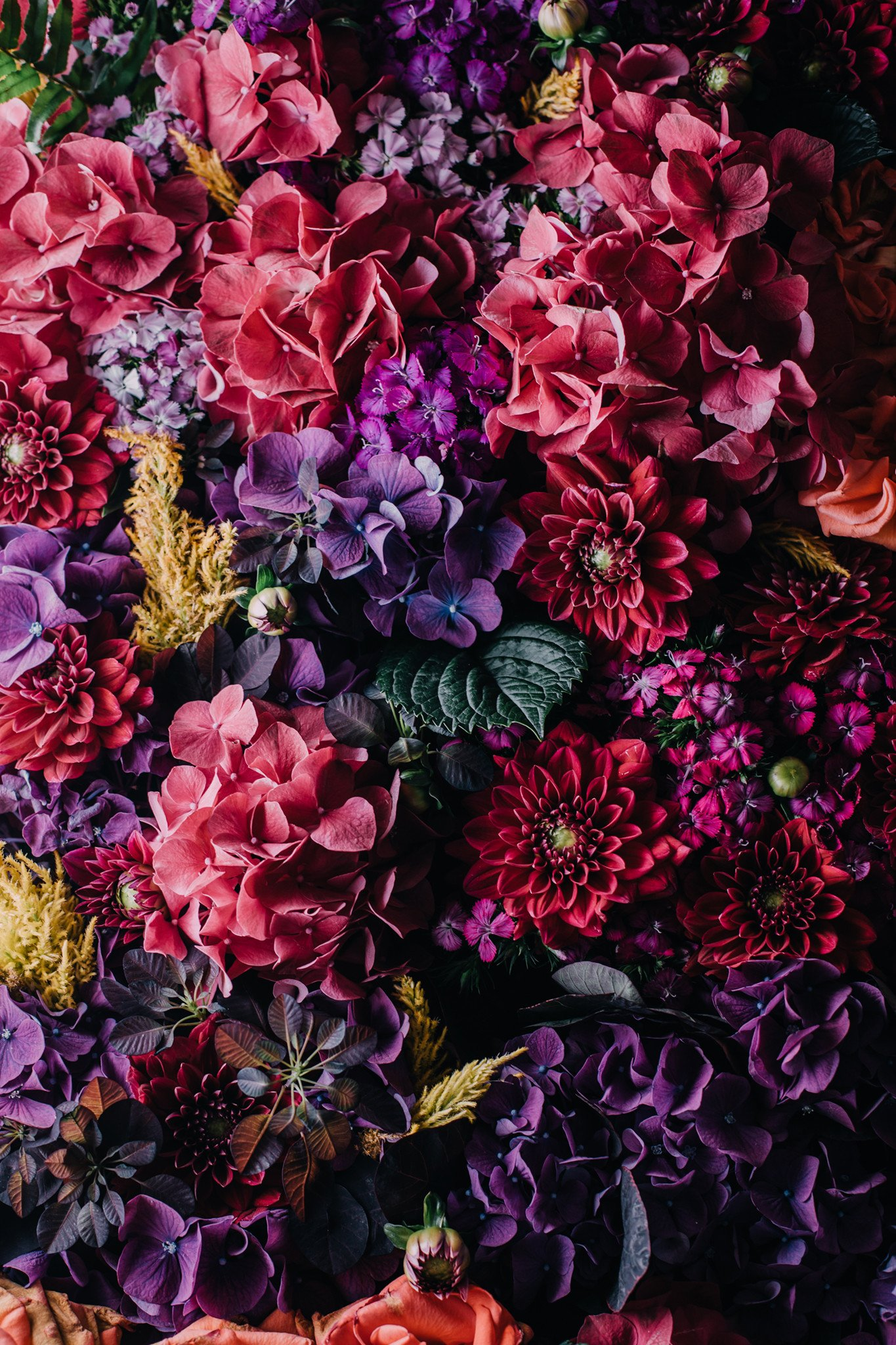 A large bouquet of red, pink, and purple flowers - Large unoptimised at original size
