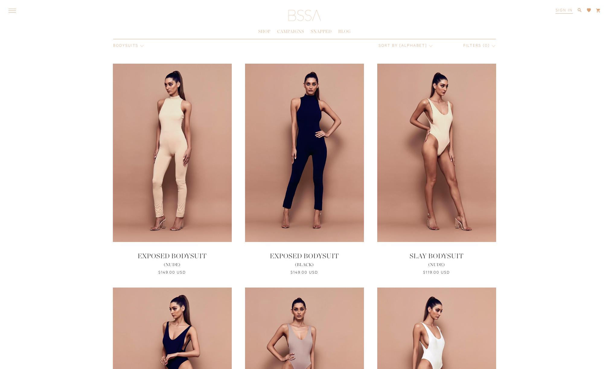 BSSA Website Optimization