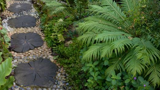 garden edging in landscaping