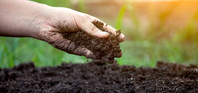How to prepare soil for new turf
