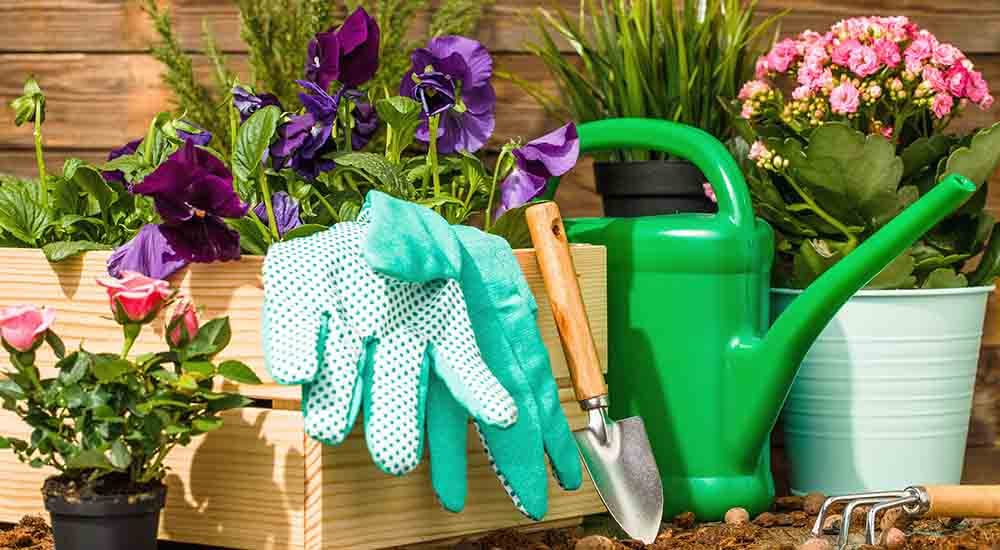 Essential gardening tools