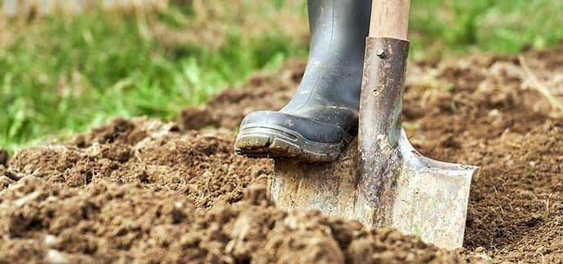 gardening spade