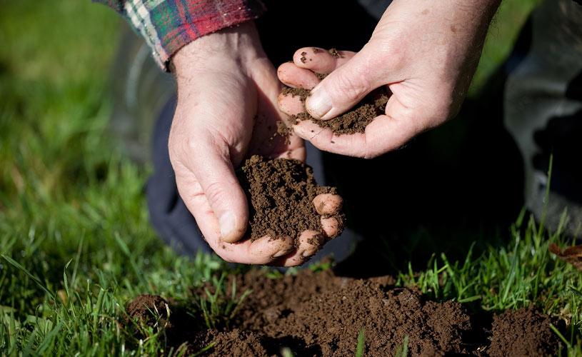 farmer testing soil