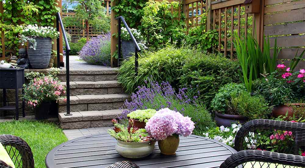 5 garden projects for your backyard