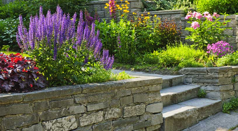 edge retaining walls for plants