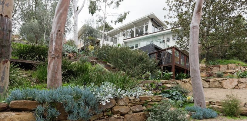 council guidelines for landscaping