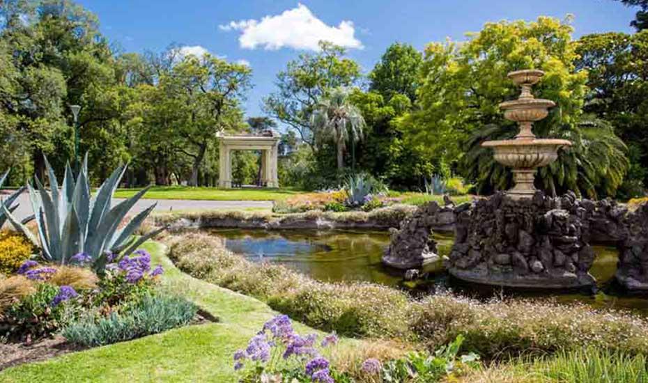 Drought resistant plants for Melbourne gardens